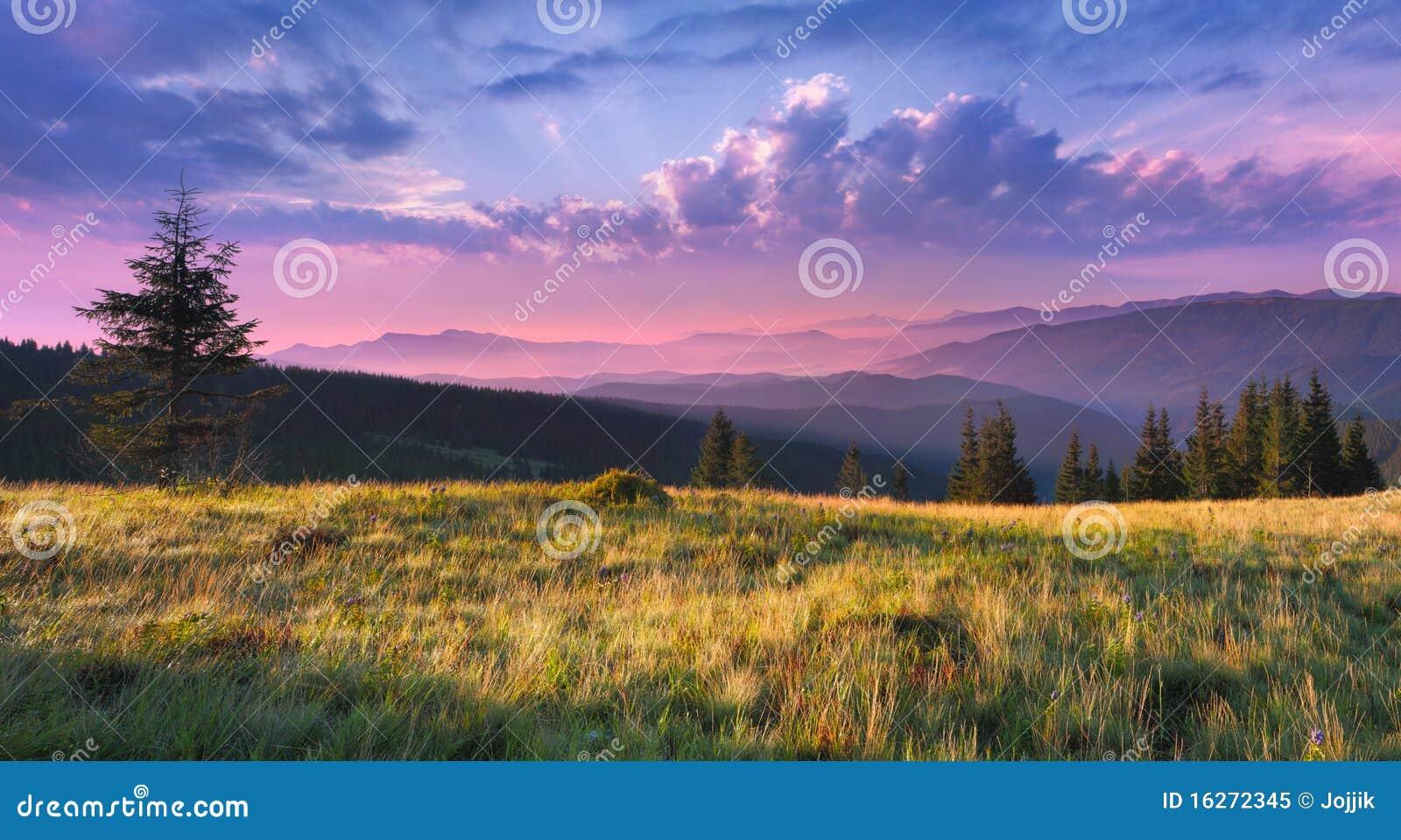 Beautiful Morning Landscape Royalty Free Stock Photo  Image: 16272345