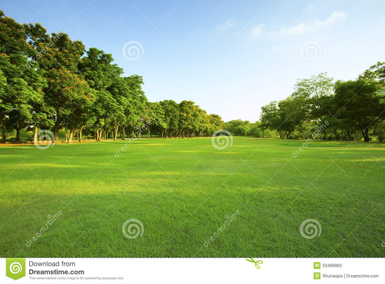 grass stock photos images u0026 pictures 2 550 764 images
