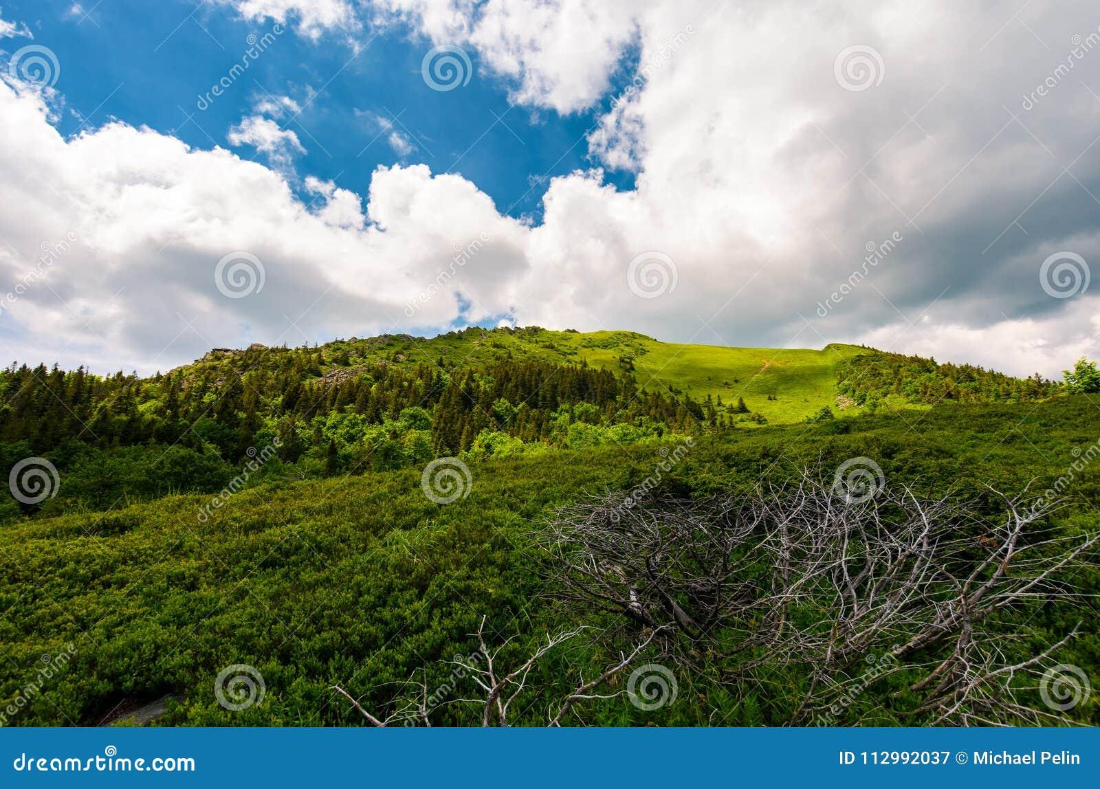 Beautiful mountain landscape in summertime