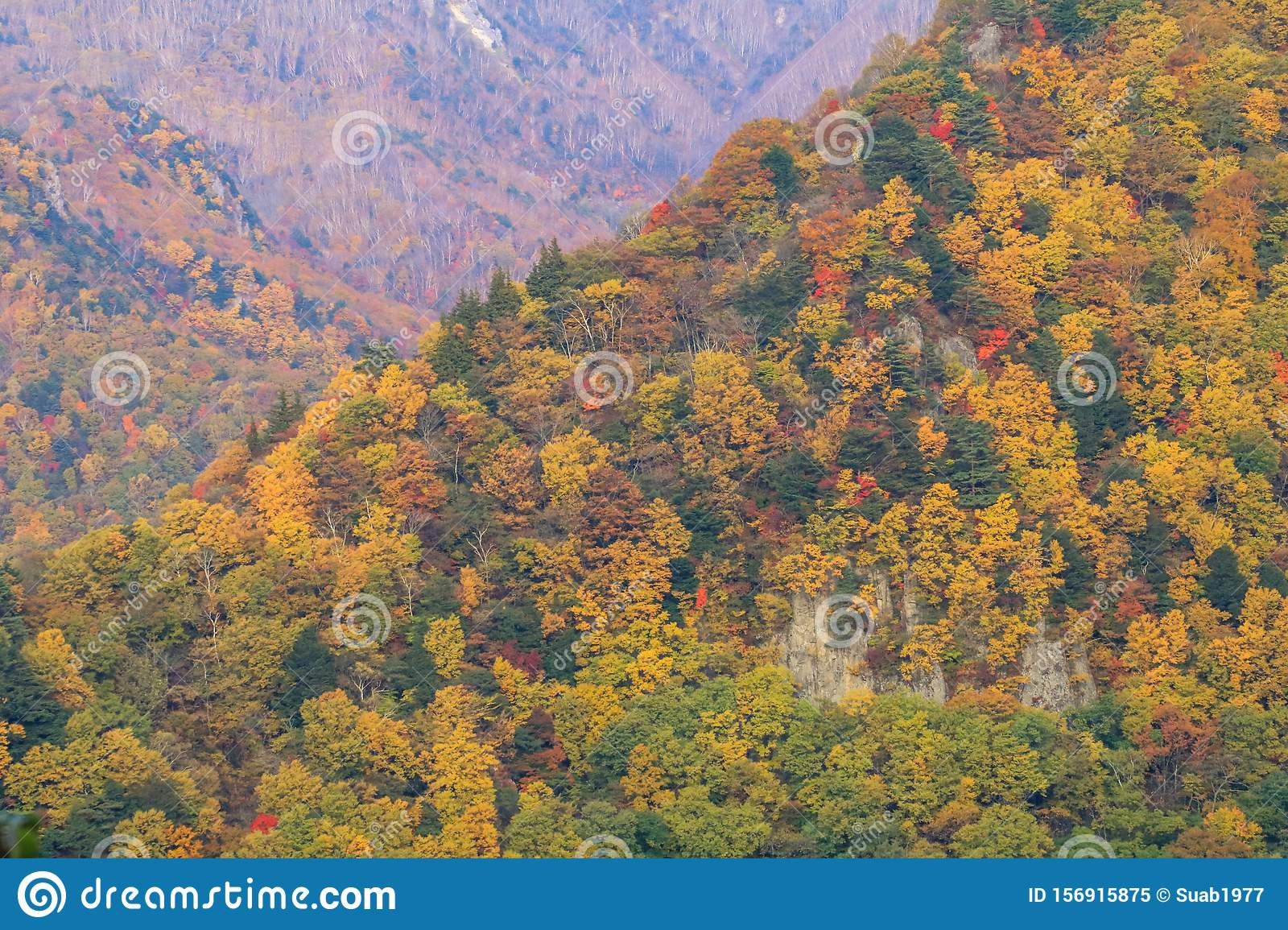 Beautiful mountain view of Japan autumn in Obuse park ,Nagano Prefecture,Japan
