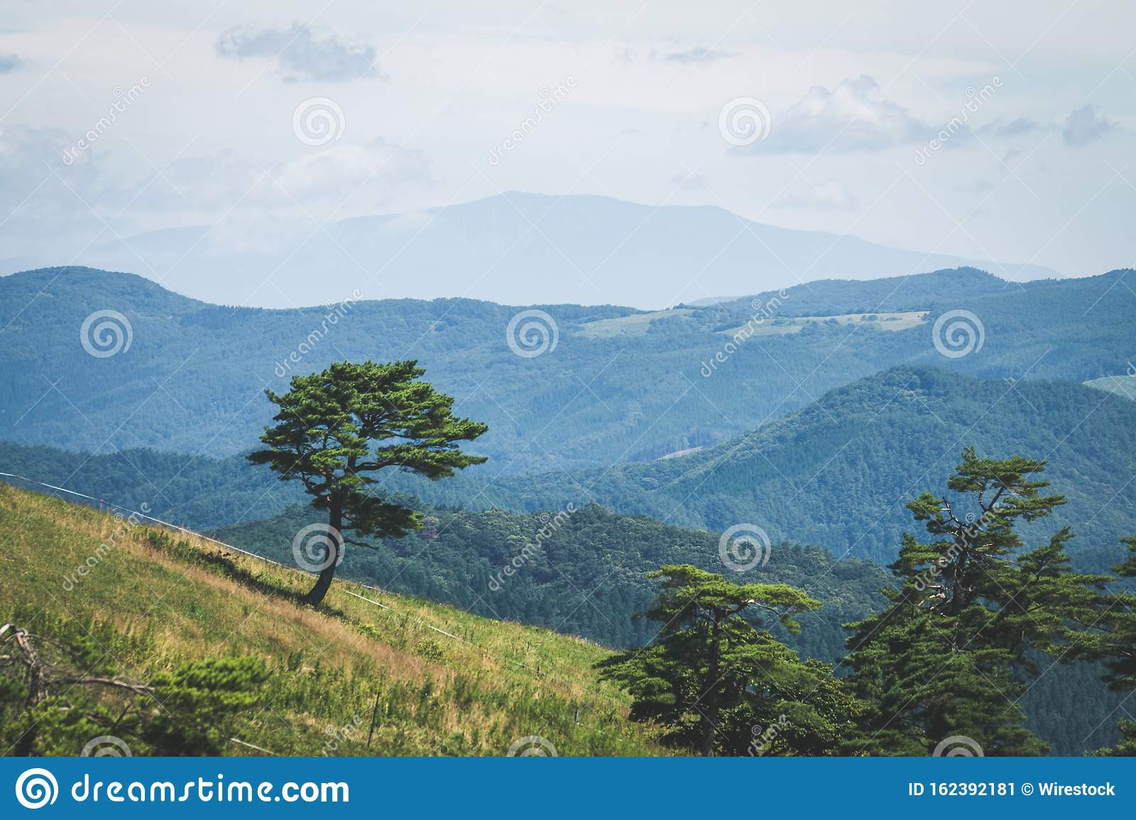 Beautiful Mountainous Scenery Of A Country Landscape Full Of Green Trees And Other Plants Stock Image Image Of Clouds Grass 162392181
