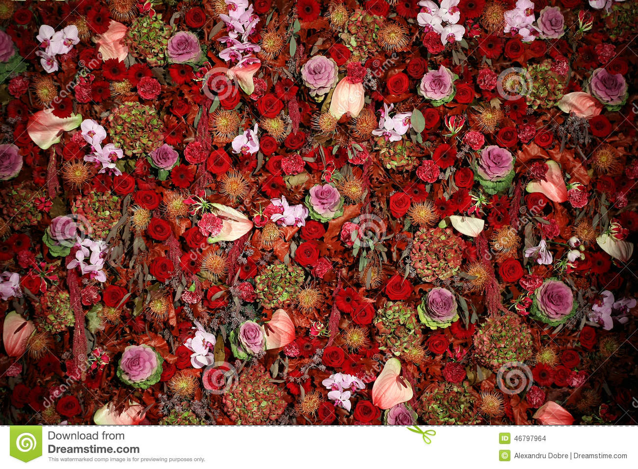 Beautiful natural flower wall texture stock photo image for Flower wall garden