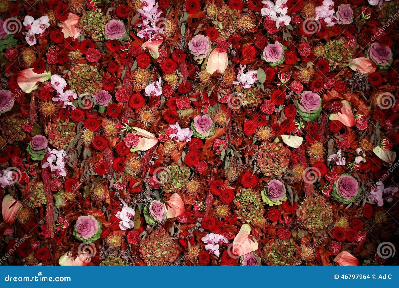 Beautiful natural flower wall texture stock photo 46797964 megapixl izmirmasajfo