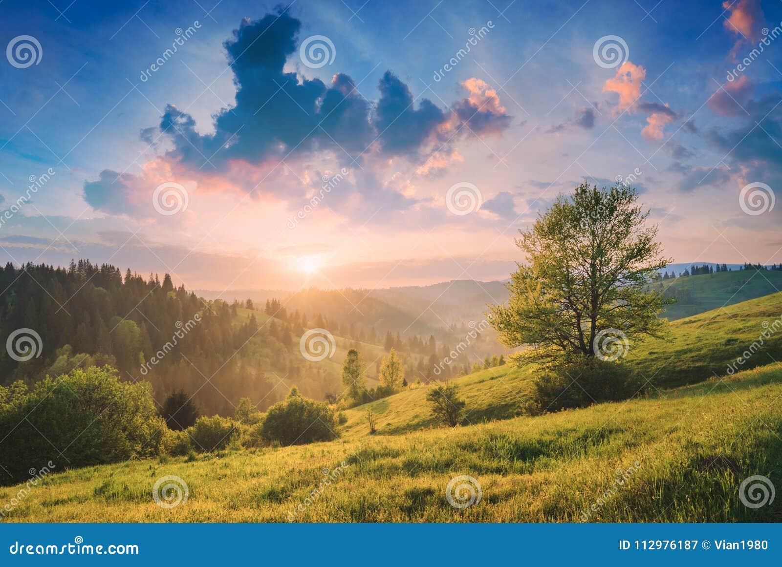 Beautiful nature of Carpathians