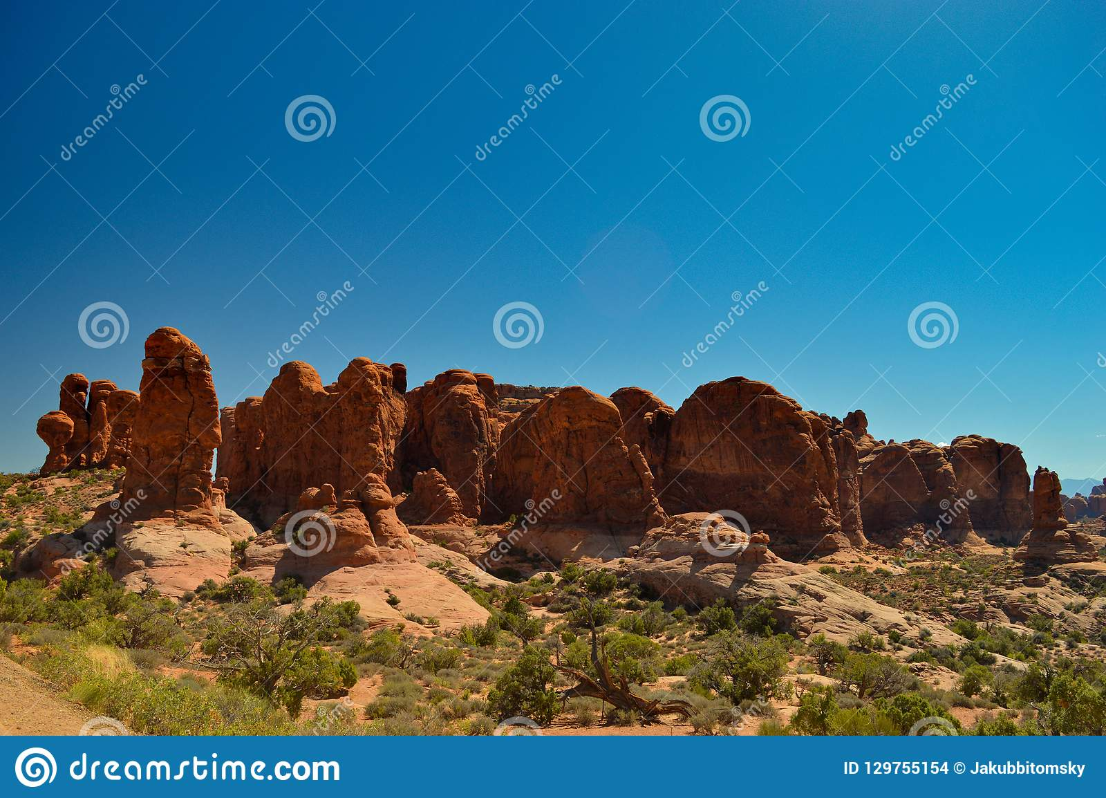 Nature in the Arches national park