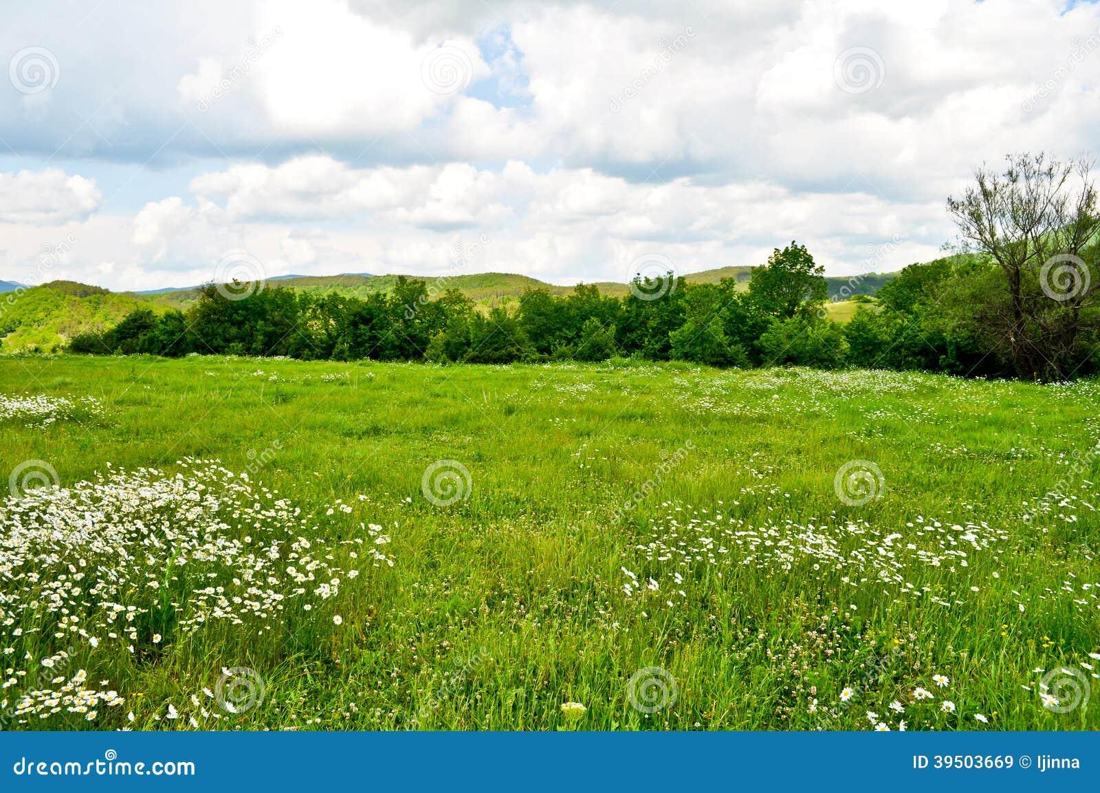 Beautiful nature view