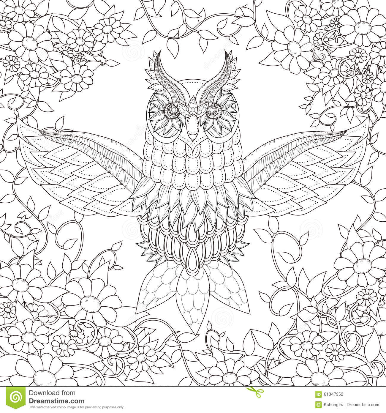 Beautiful Owl Coloring Page Stock Vector Illustration Of