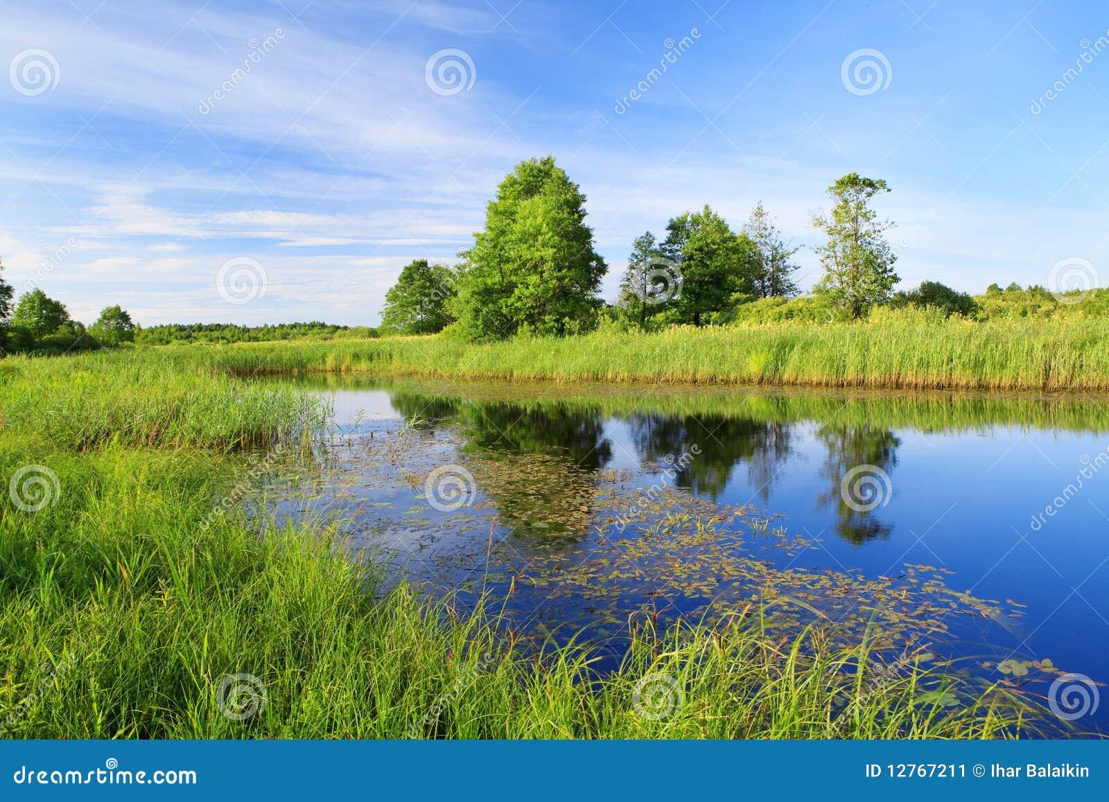 Beautiful panorama of the river