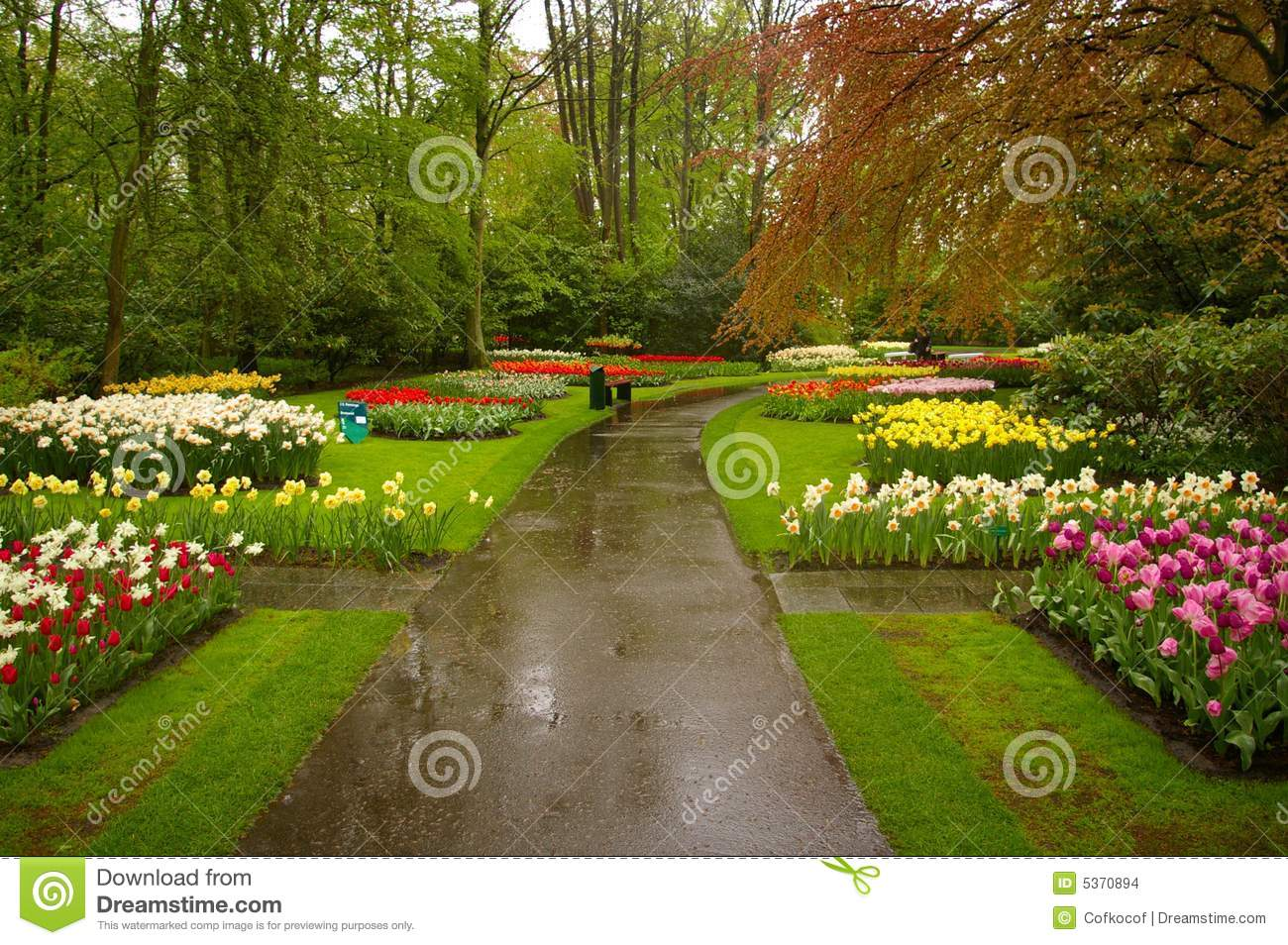 Http Www Dreamstime Com Stock Images Beautiful Park Image5370894