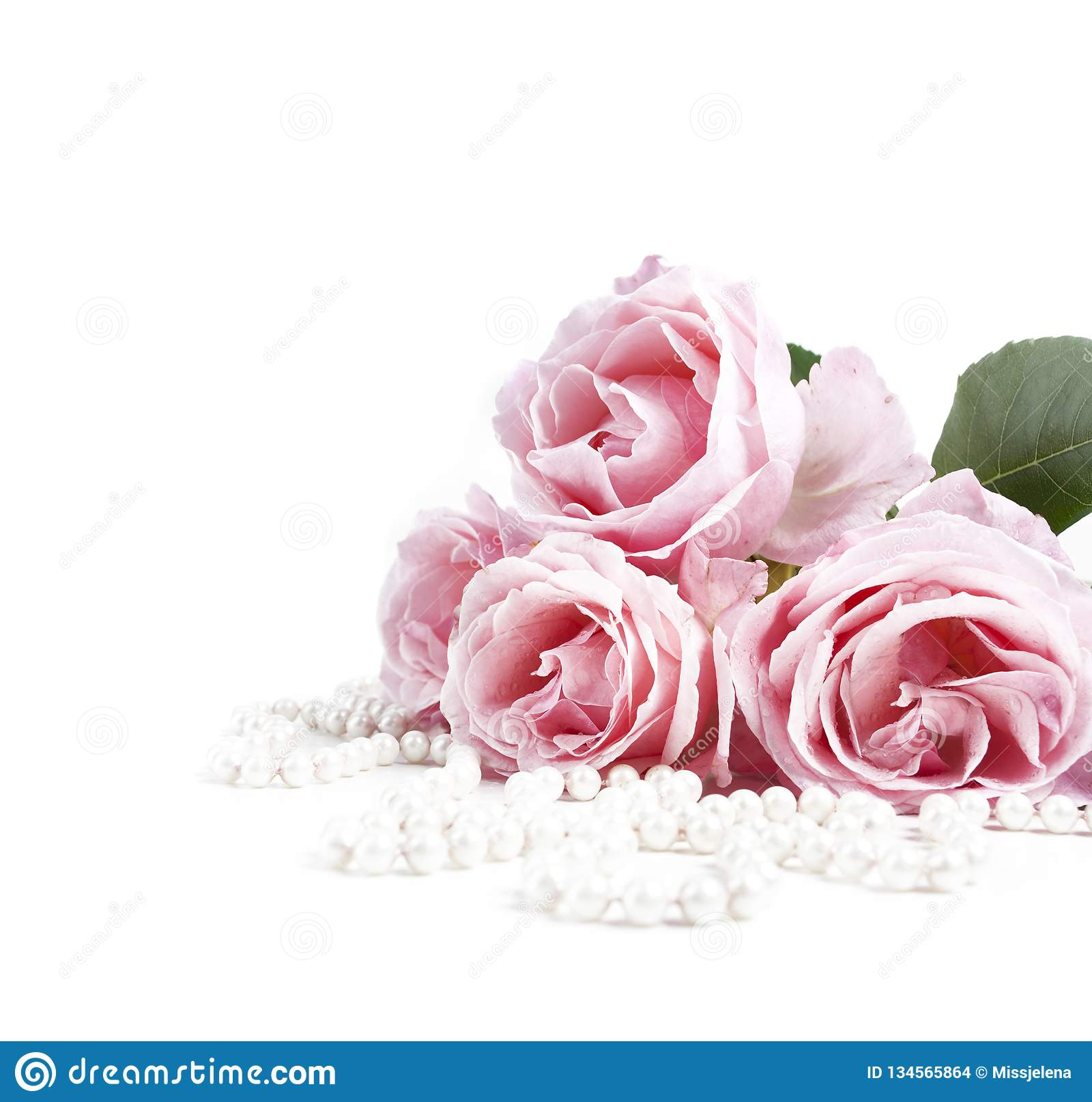Beautiful Pastel Pink Roses Bunch And Elegant Bridal Pearls Isolated Over White Background Stock Photo Image Of Feminine Femininity 134565864
