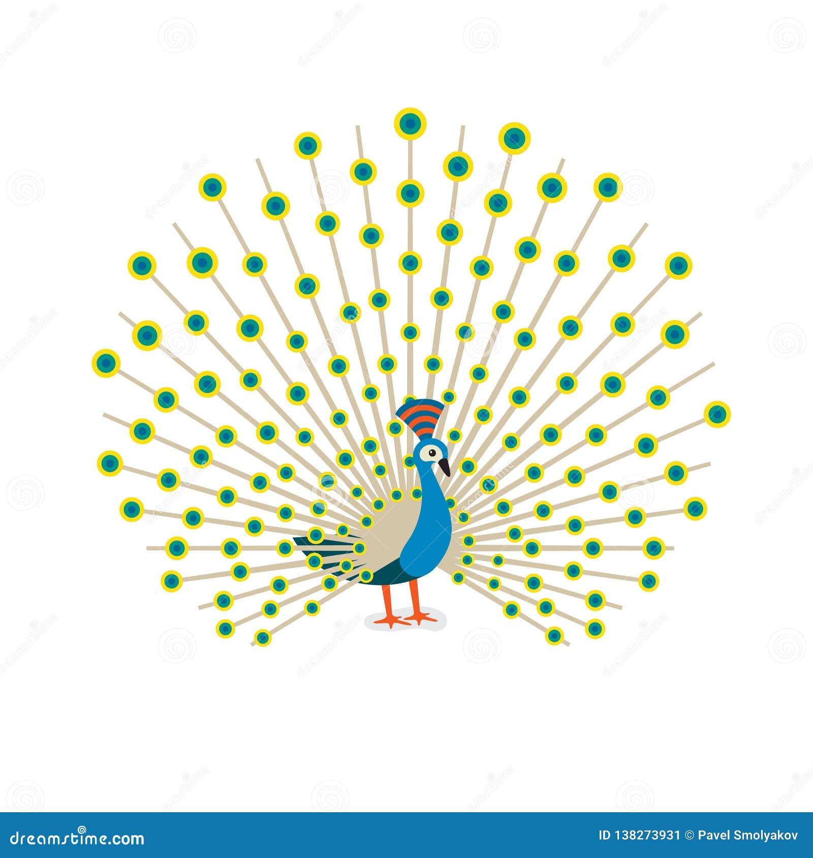 Beautiful Peacock Cartoon Flat Drawing To Color  Vector Illustration