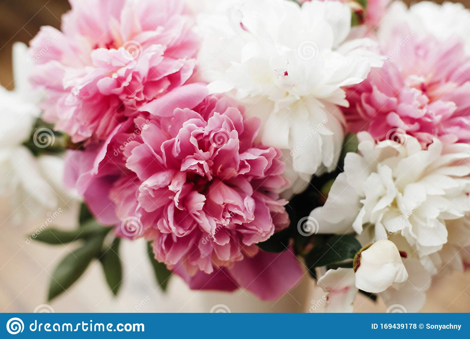 Beautiful Peony Bouquet In Sunny Light Stylish Pink And White Peonies On Wooden Background Hello Spring Happy Mothers Day Stock Photo Image Of Leaf Love 169439178