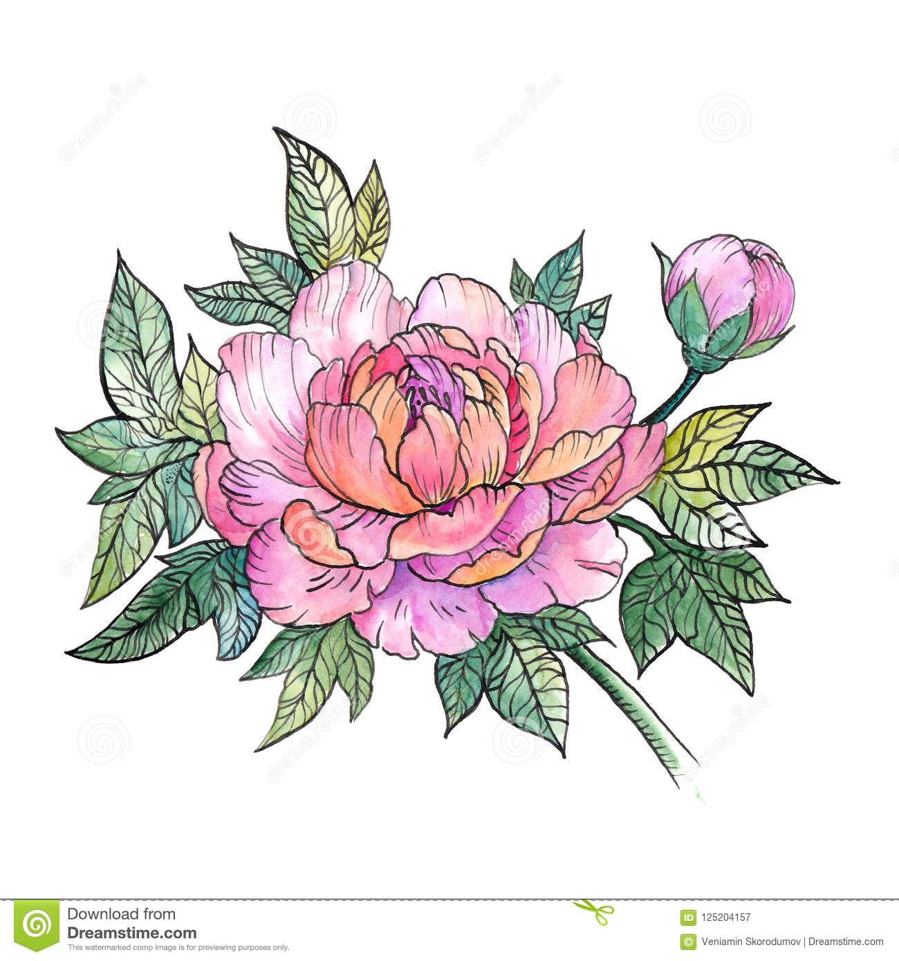 Beautiful Peony Flower Bouquet Of Peonies Tattoo Stock