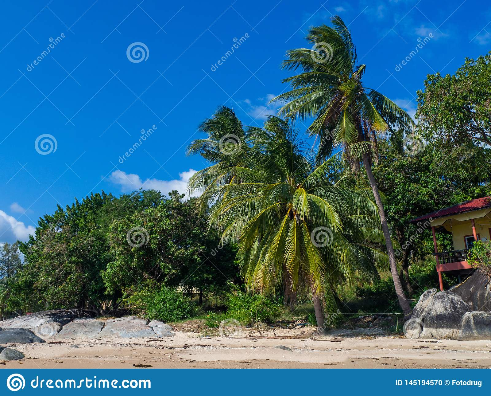 Beautiful pictures of sandy beaches on Koh Phangan