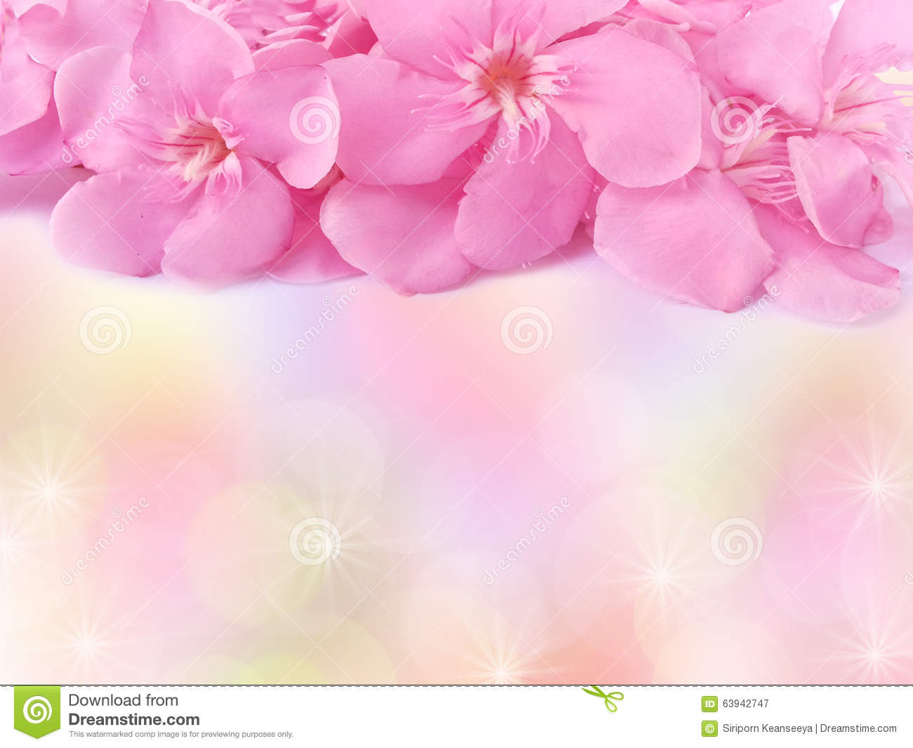 Pink Flower Frame Background