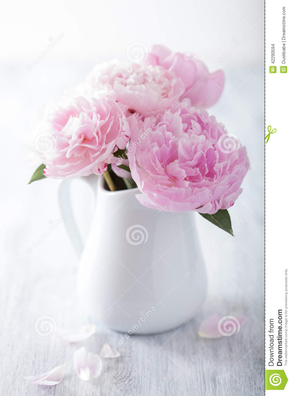 Beautiful pink peony bouquet in vase stock photo image of white beautiful pink peony bouquet in vase reviewsmspy