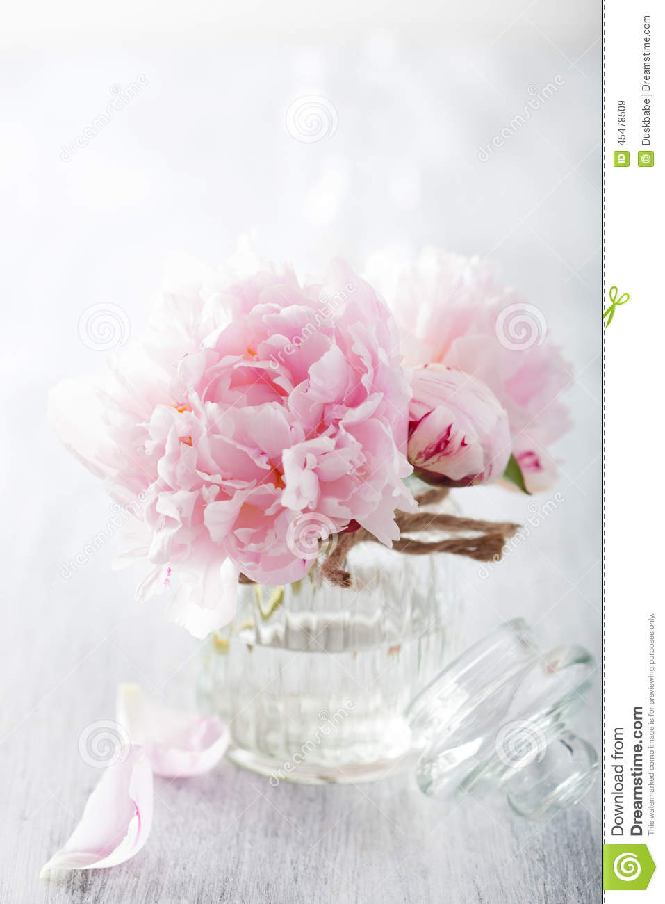 Beautiful Pink Peony Flowers Bouquet In Vase Stock Image Image Of