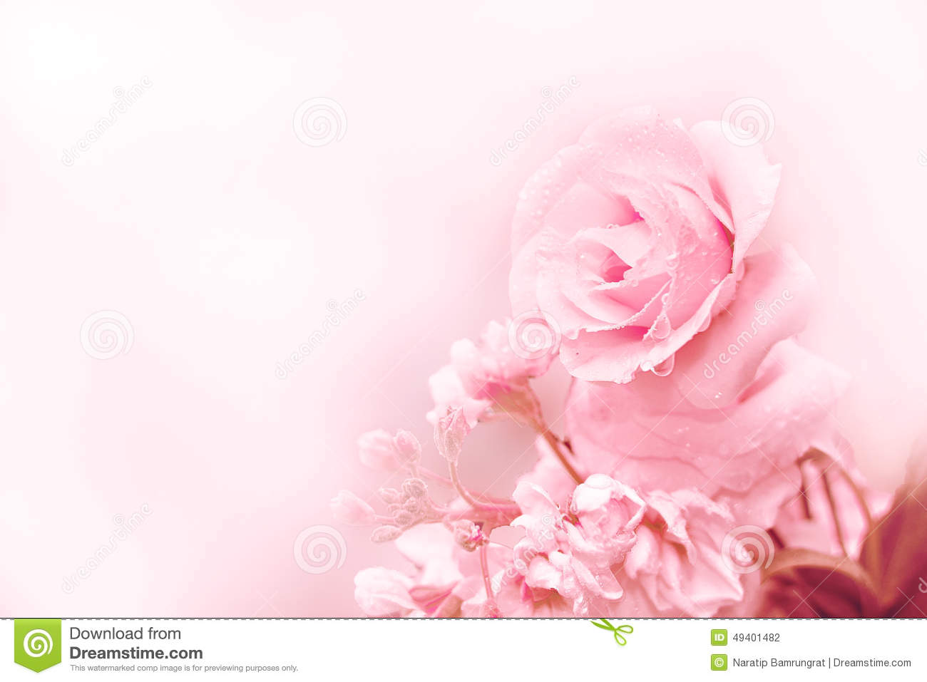light pink floral background - photo #44