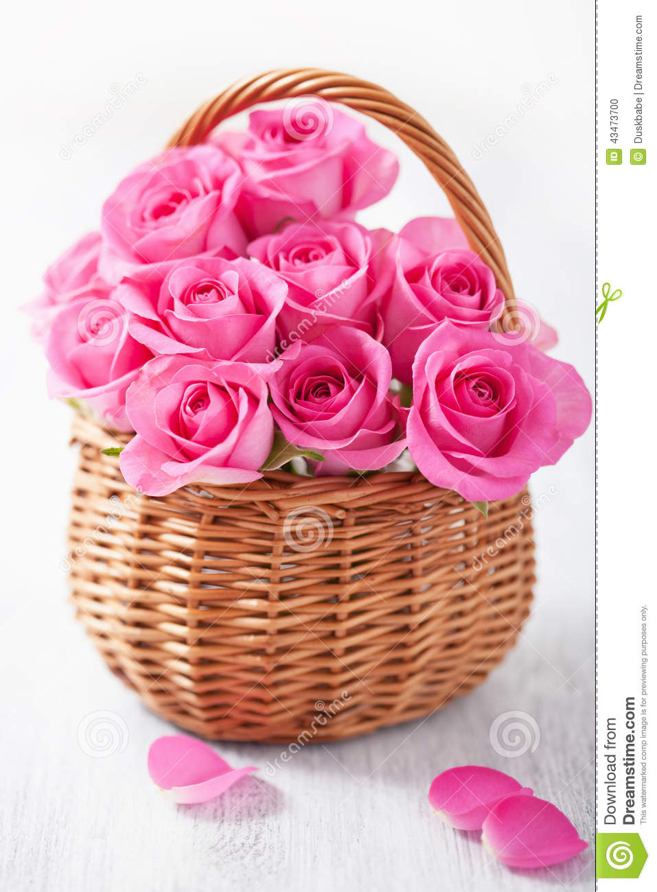 Beautiful Pink Roses In Basket Stock Photo Image Of Floral Tender