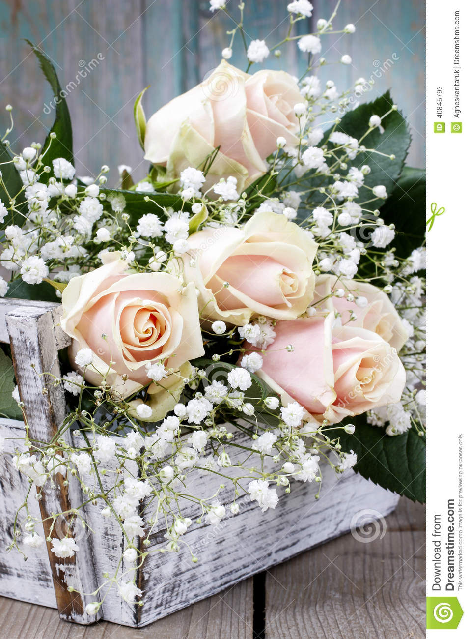 Beautiful Pink Roses And Gypsophila Paniculata Stock Image