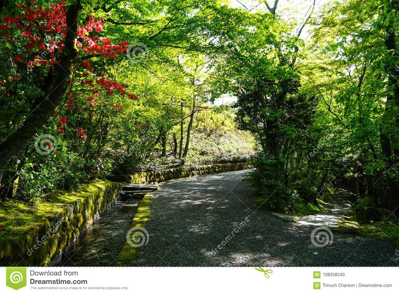 Beautiful pleasant walkway road under green tree and red flower tunnel with fresh water canal ditch cover with moss and lichen