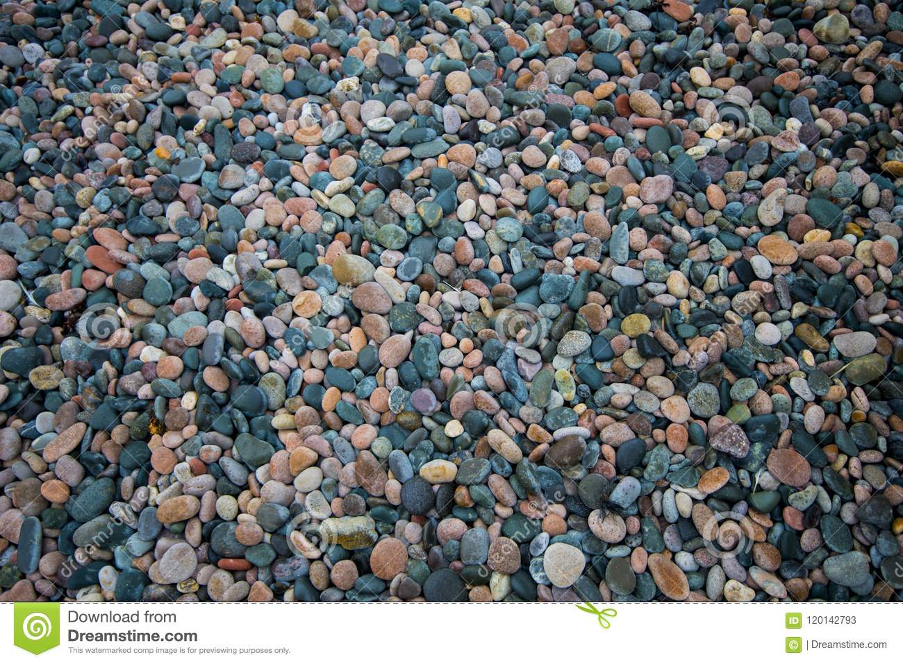 A Background Image Of Beach Stones In West Wales Britain Stock