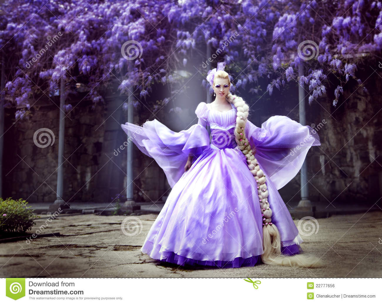 The Beautiful Princess With A Long Plait Royalty Free Stock Image Image 22777656