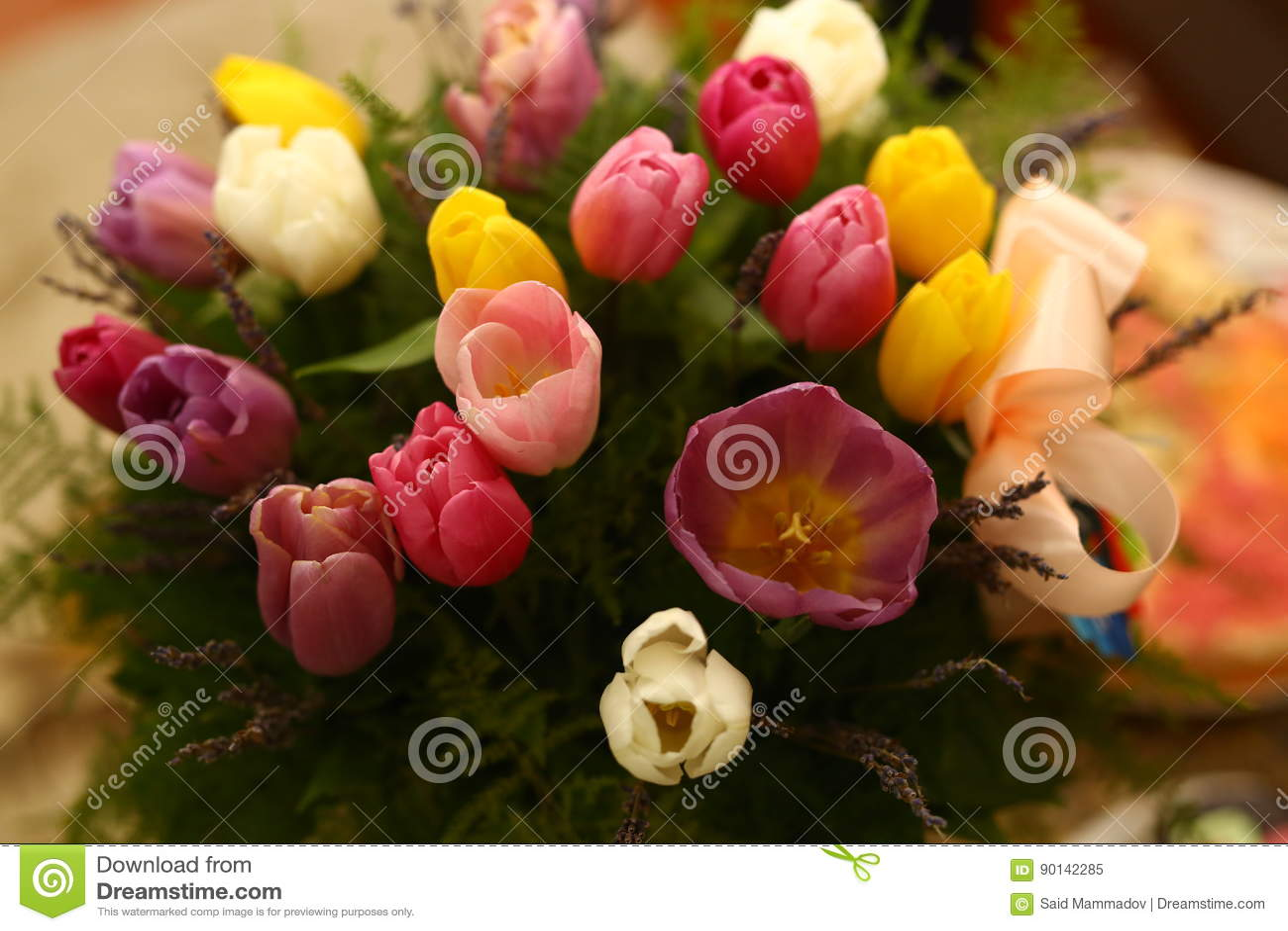 Beautiful Purple Colored Tulip Flowers Background Stock Image ...