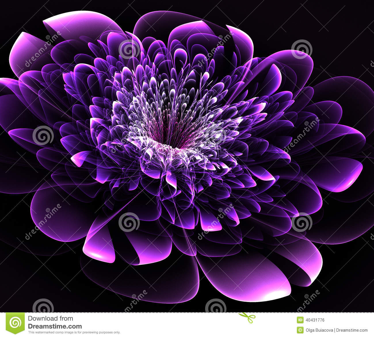 Beautiful purple flower on black background stock illustration beautiful purple flower on black background izmirmasajfo