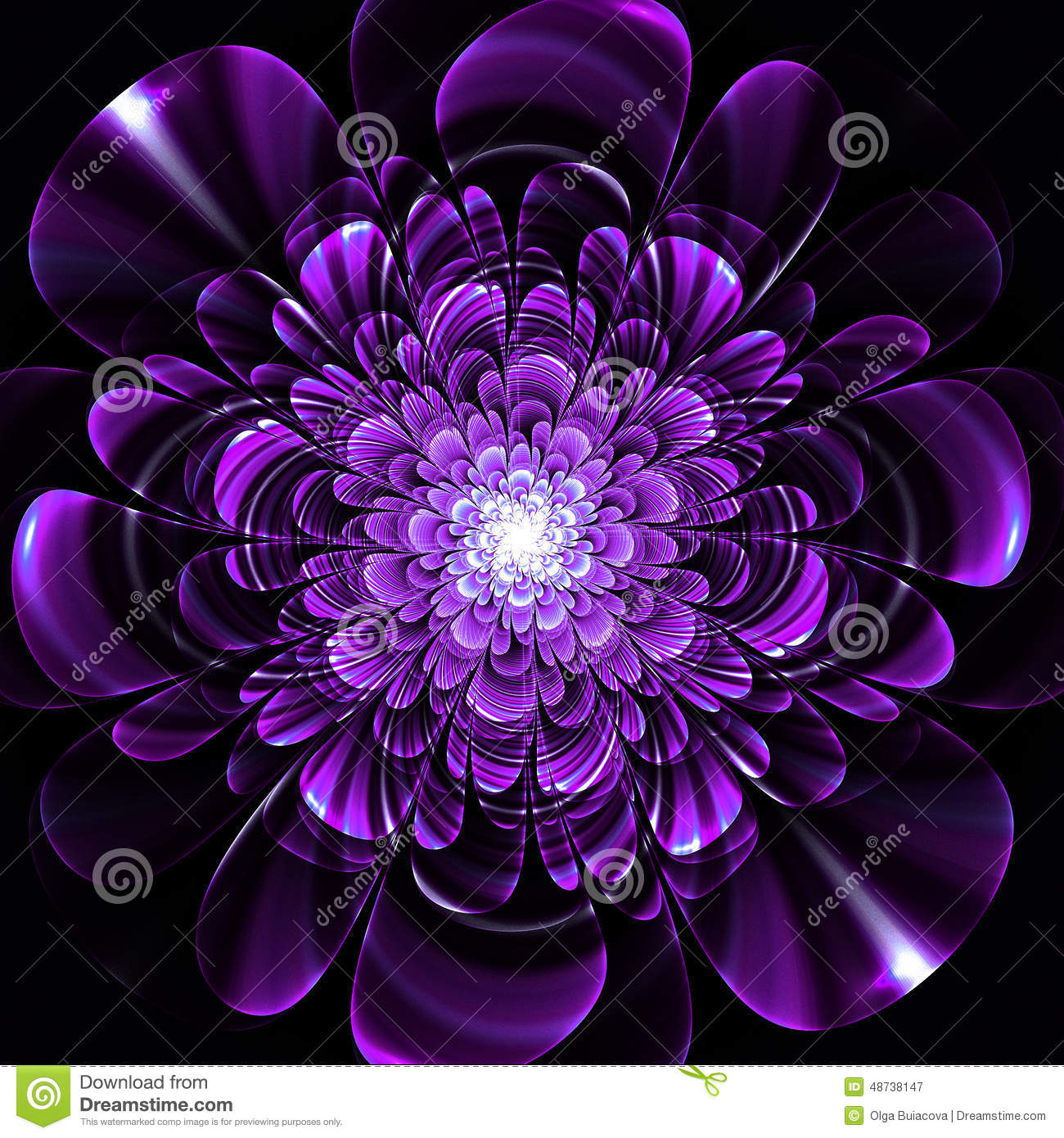 Beautiful Purple Flower On Black Background Computer Generated