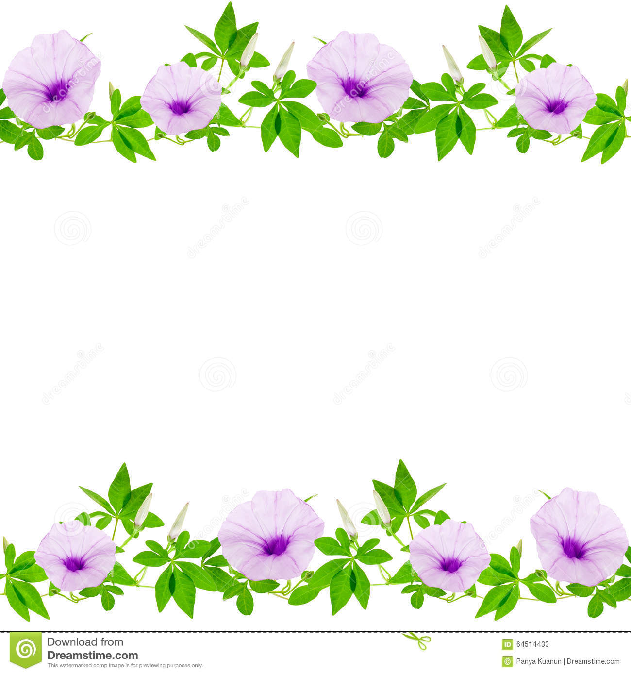 Beautiful Purple Flower And Leaves Frame On White Background Stock