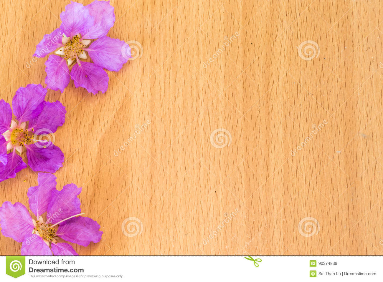 Beautiful Purple Flowers Blooming On The Wooden Background Stock