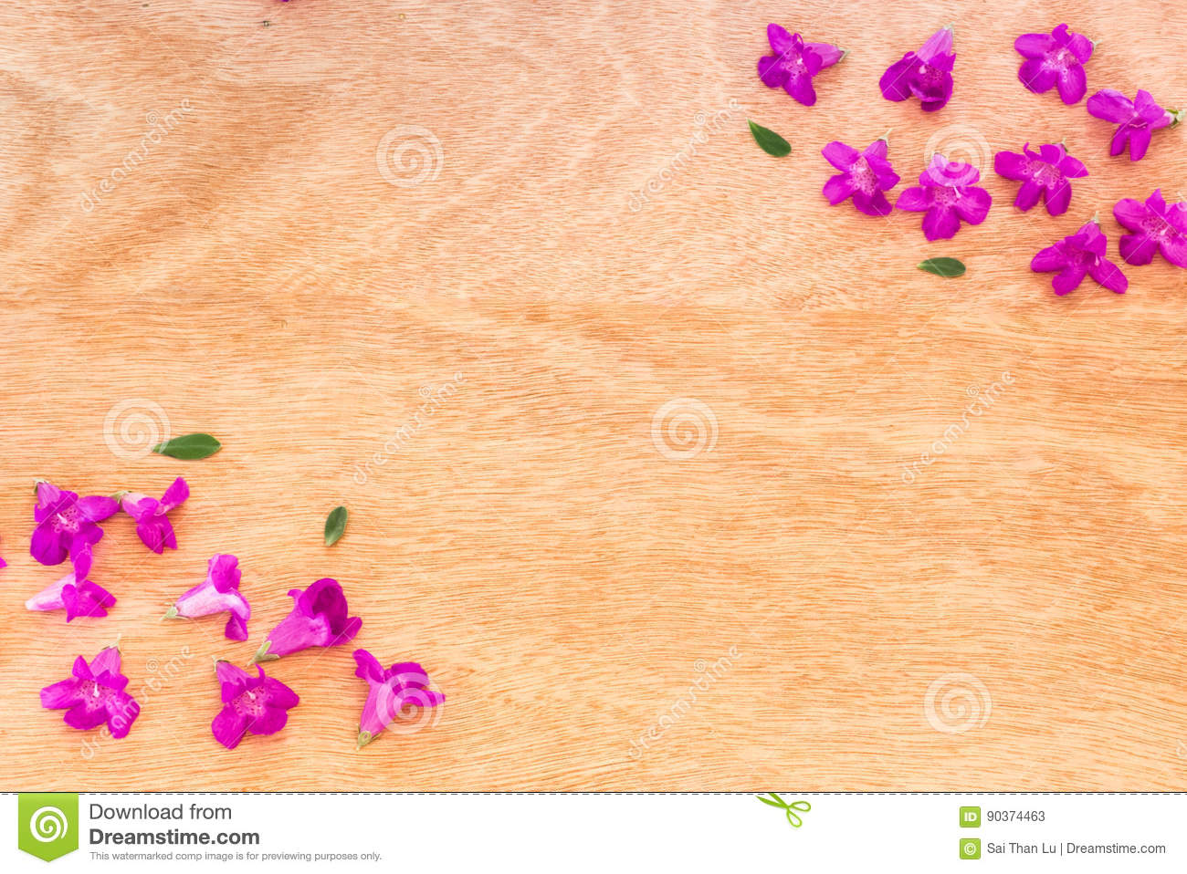 Beautiful Purple Flowers On The Wooden Background Stock Image