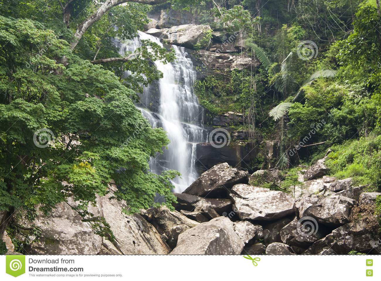 Beautiful Rain Forest And Waterfall Royalty Free Stock Photo - Image ...