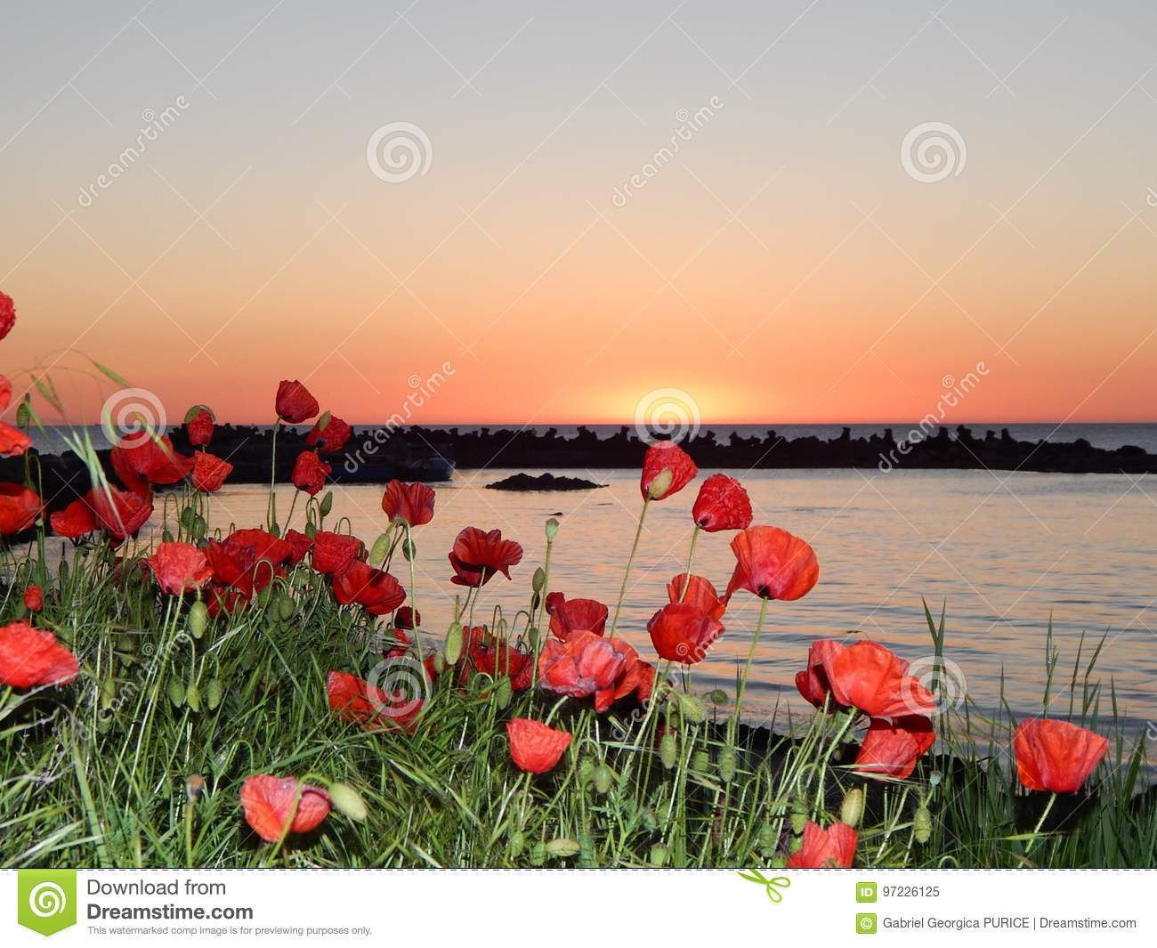 Beautiful Real Sunrise At The Black Sea Stock Image Image Of Blue
