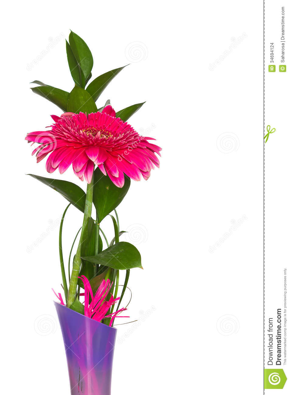 Beautiful red flower in a vase stock photo image of flora image beautiful red flower in a vase izmirmasajfo