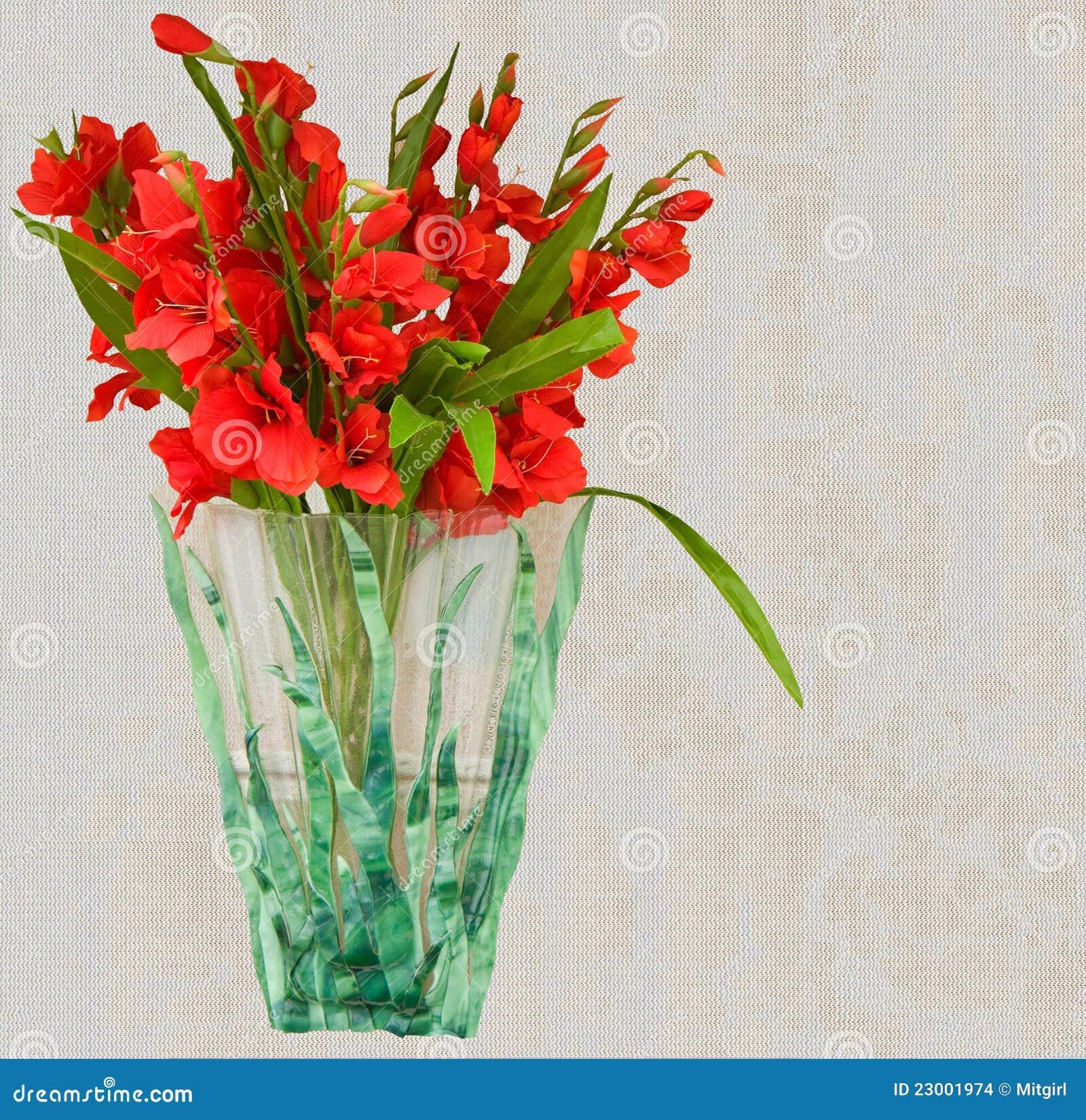 Beautiful Red Gladiolus Flower Vase Stock Images - Image ...
