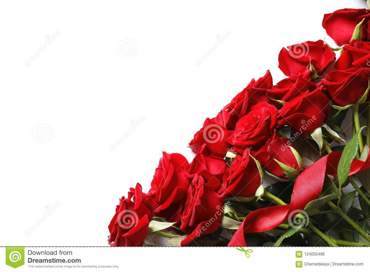 Beautiful Red Rose Flowers On White Background Stock Photo Image
