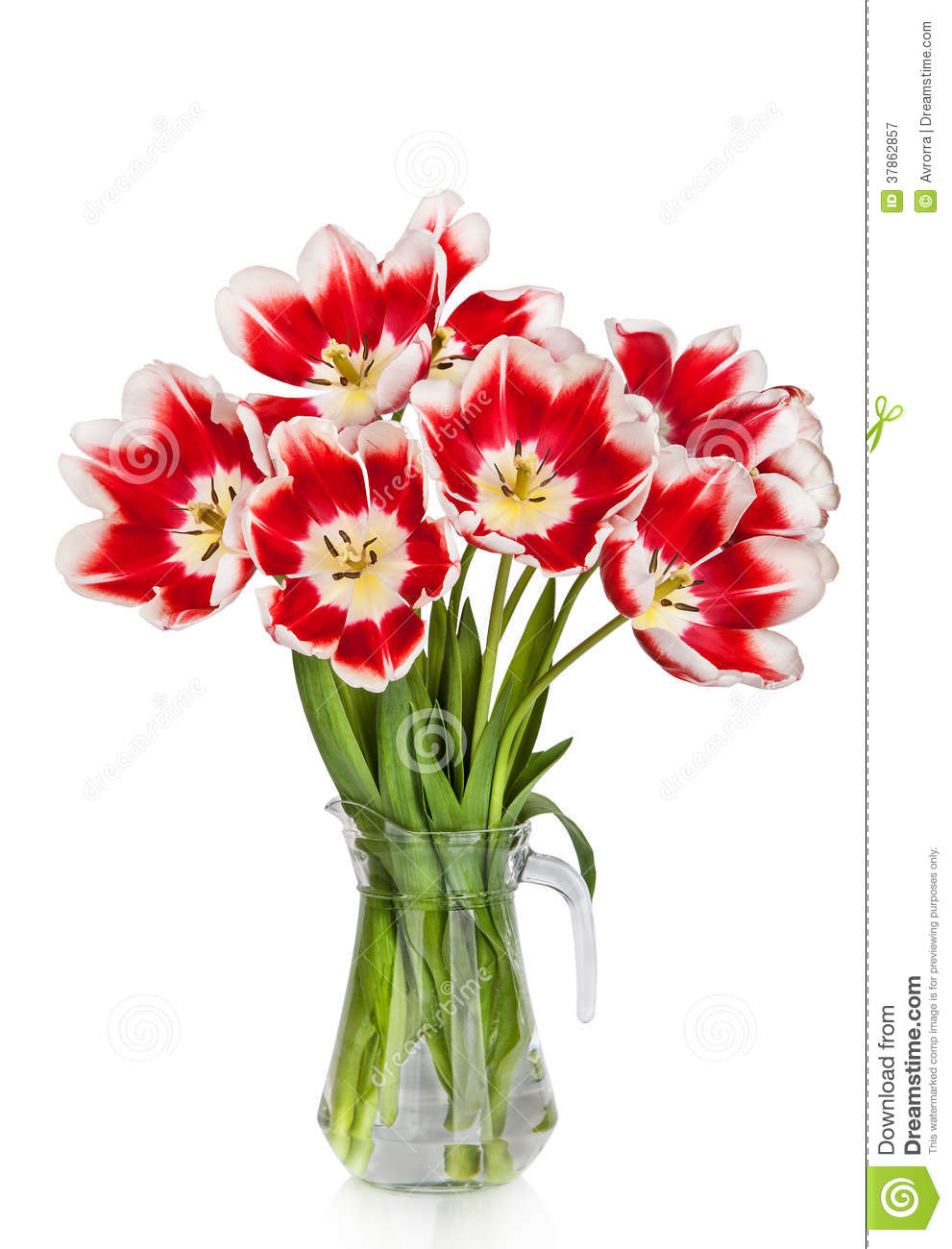 beautiful red tulips flowers bouquet in vase stock image image 37862857. Black Bedroom Furniture Sets. Home Design Ideas