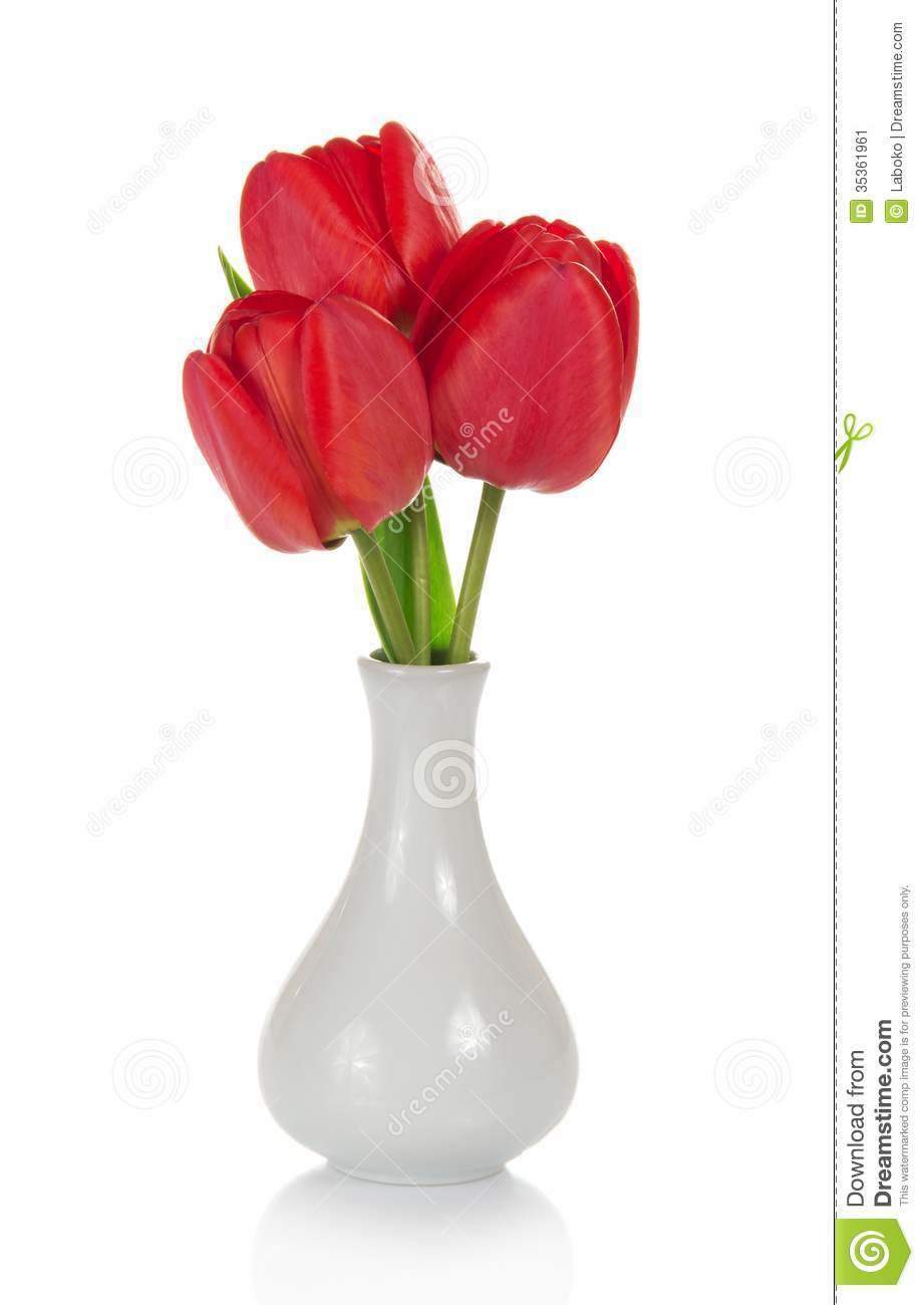 Beautiful Red Tulips In Vase Stock Image Image 35361961
