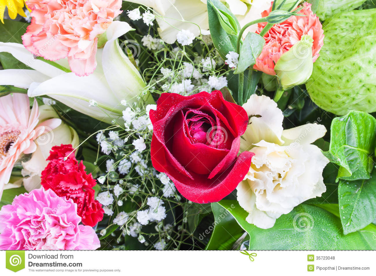 Beautiful rose carnation lilly and swan plant stock photo image group of beautiful flowers with water drops izmirmasajfo