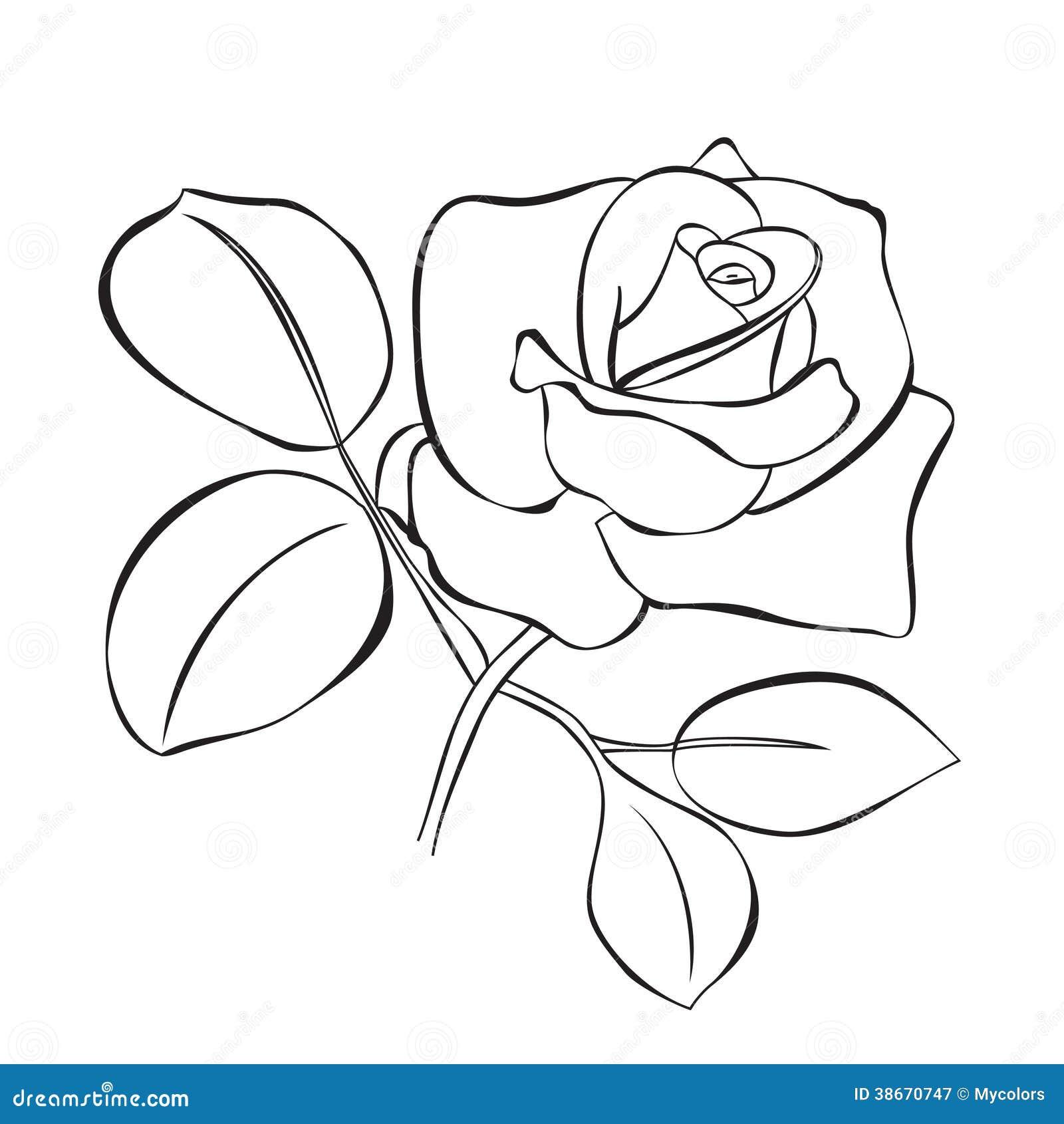 Как нарисовать розы для открытки