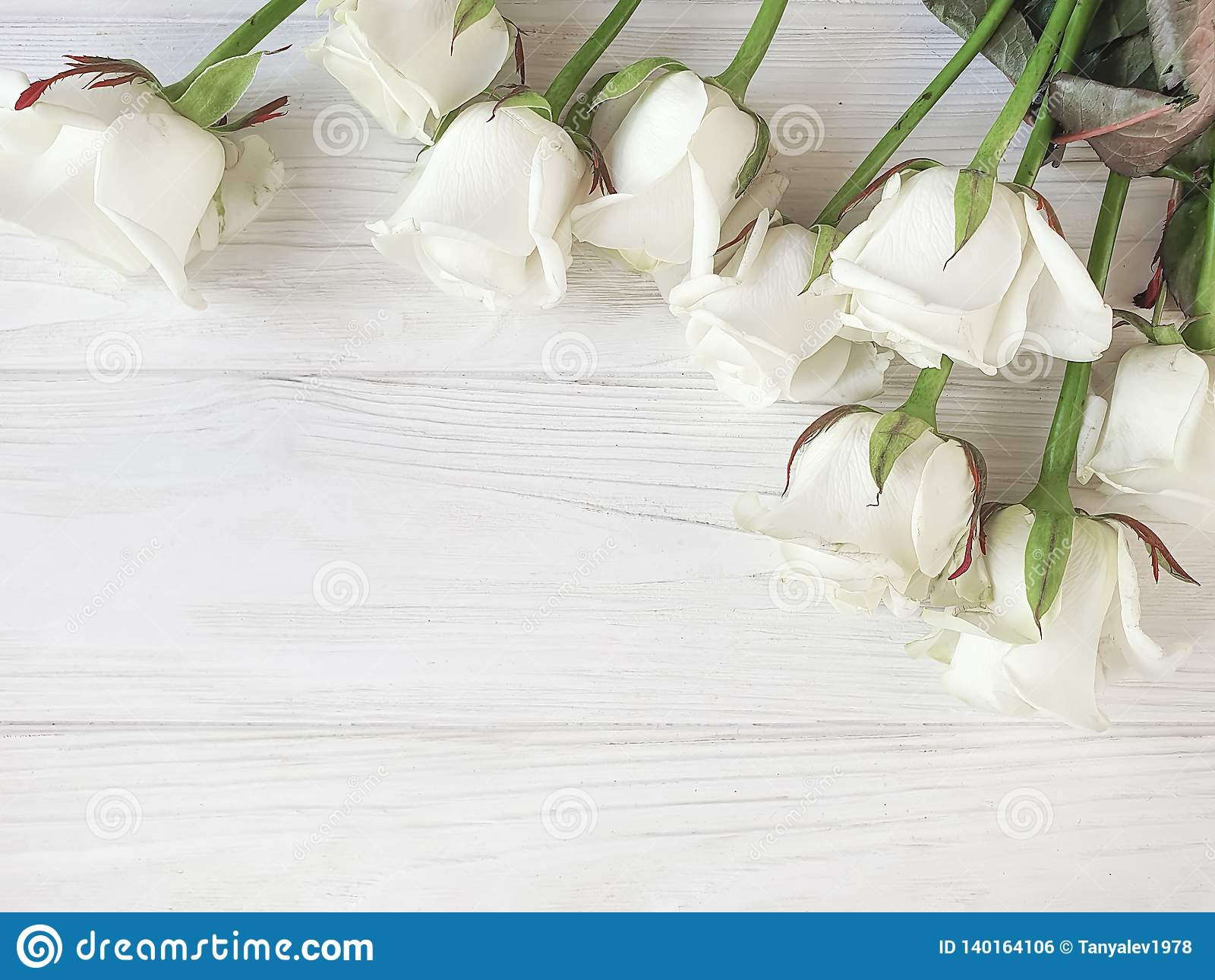 Beautiful roses blossom romantic border on white wooden background frame