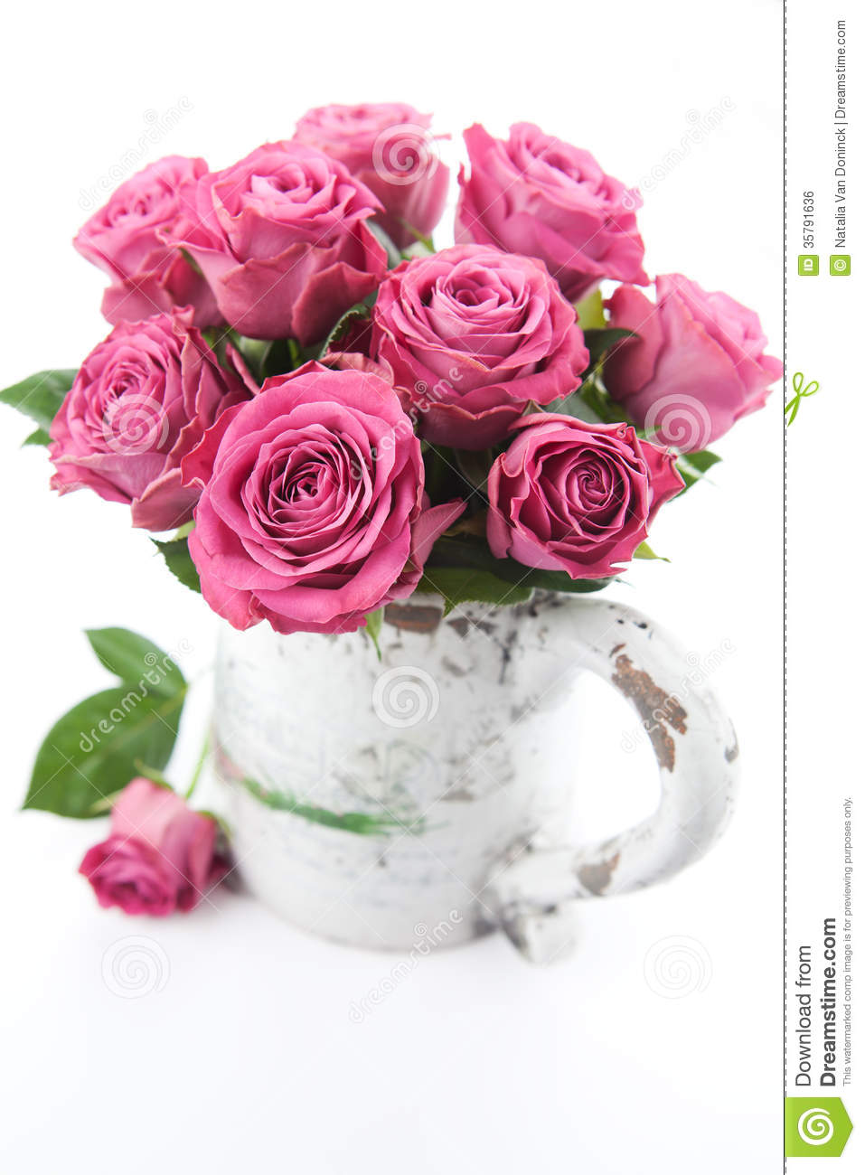 Beautiful Roses Royalty Free Stock Image - Image: 35791636