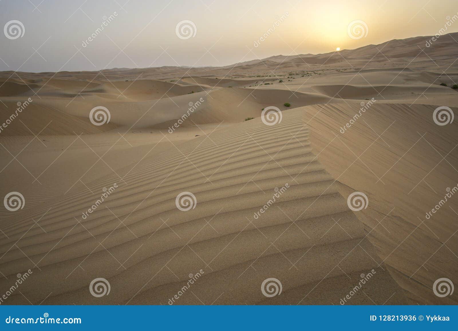 Beautiful Rub al Khali desert at sunrise