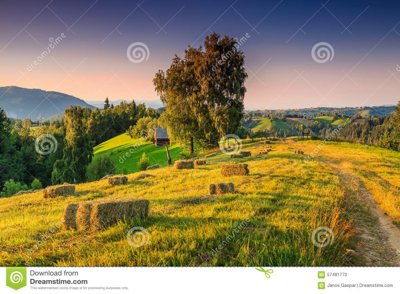 Beautiful rural landscape with hay bales transylvania for Romania landscape