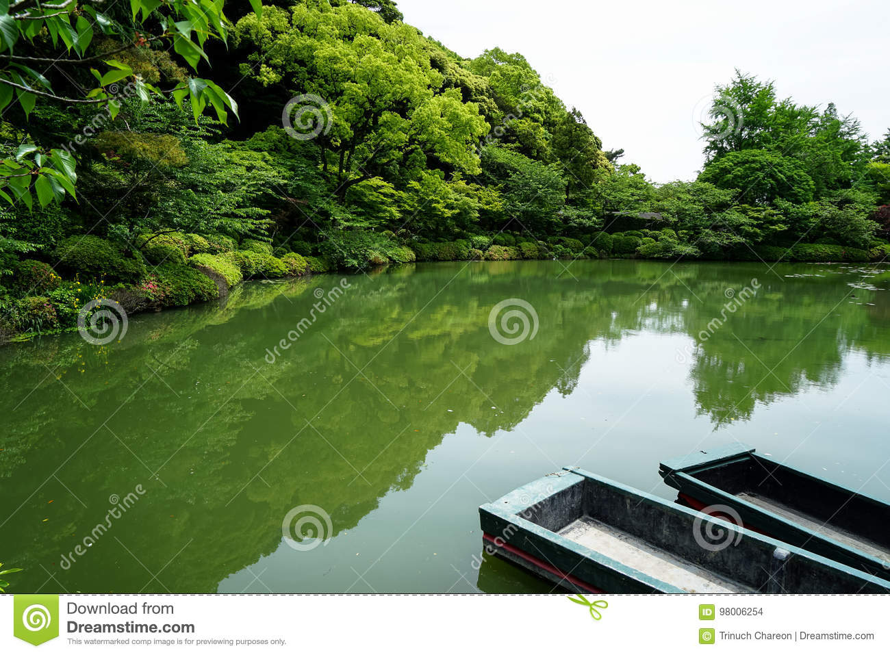 Beautiful Scene Of Lush Green Japanese Garden Mountain With Shades