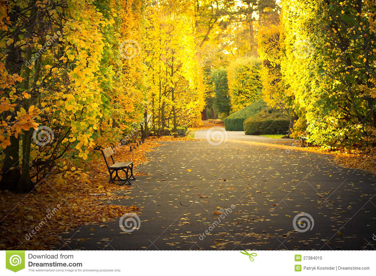 Beautiful Scenery In Autumnal Yellow Park Stock Photo
