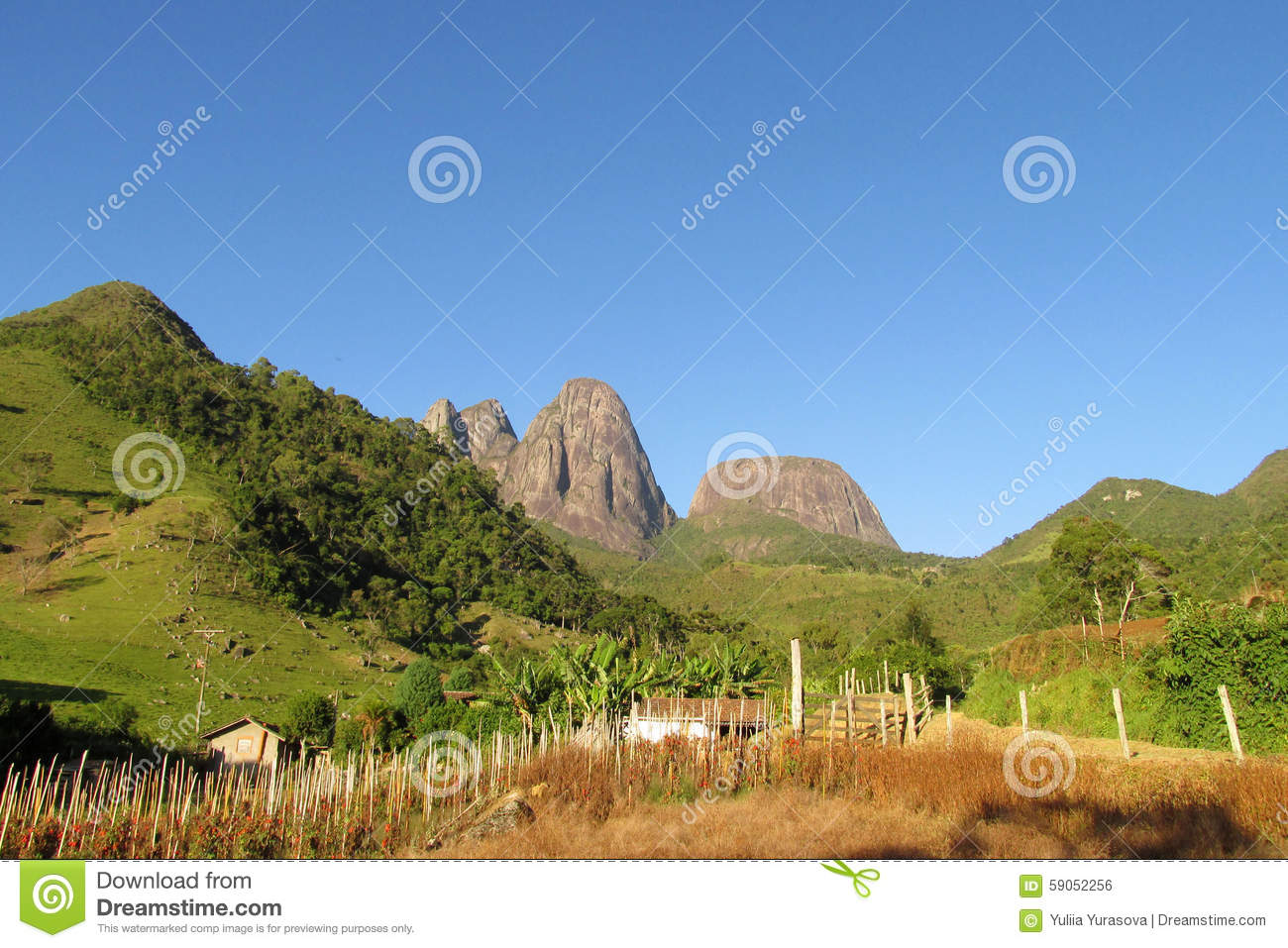 Beautiful scenery of green forest, field and smooth rocks