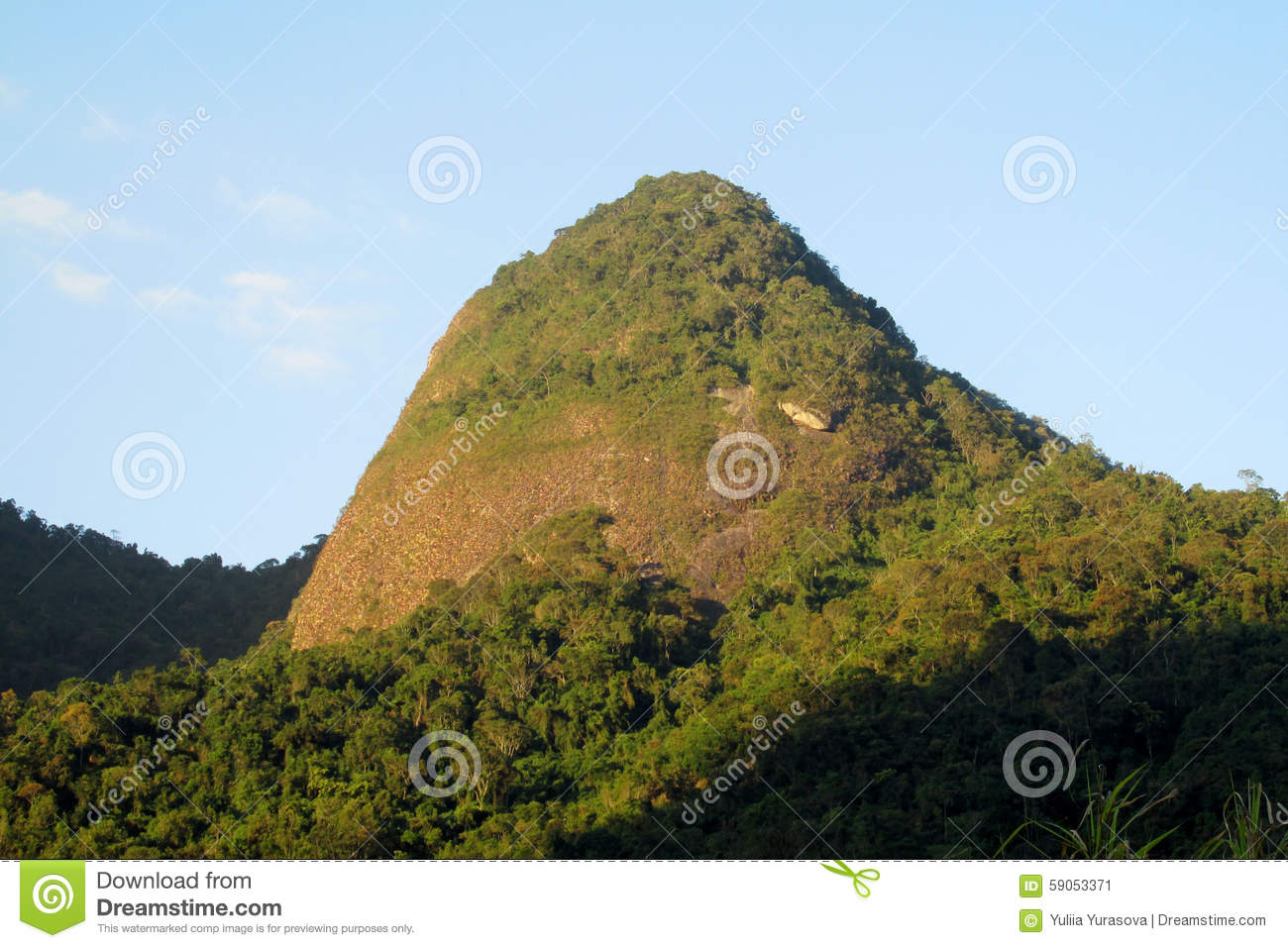 Beautiful Scenery Of Green Forest And Smooth Rocks Stock ...